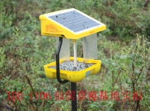 TDB-1106 was used in Blueberry orchard.