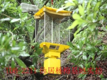 TDB-2011 was used in red bayberry orchard.